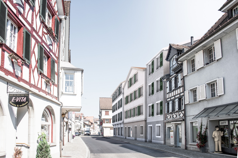 1. Bild zum Projekt 'Altstadthäuser Steckborn'