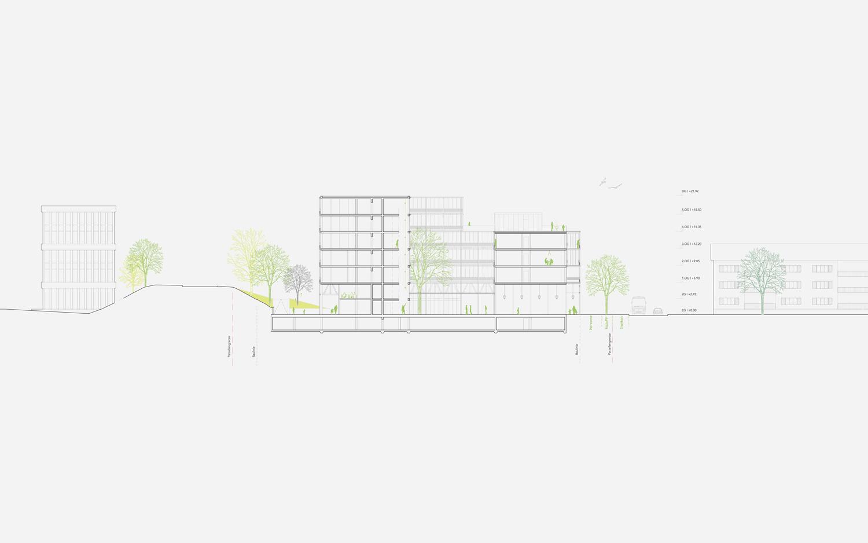 13. Bild zum Projekt 'Hofackerstrasse Muttenz'